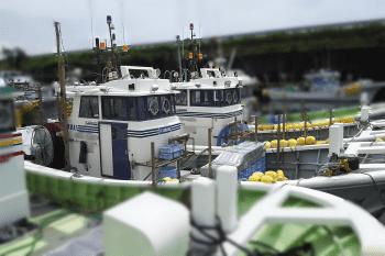 桜えび漁船1-min