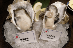 生牡蠣-min