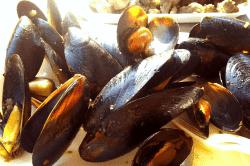 ムール貝の赤ワイン蒸-min