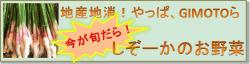 しぞーかの野菜バナー250-min