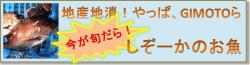 しぞーかのお魚バナー250-min