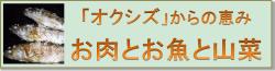 オクシズバナー250-min