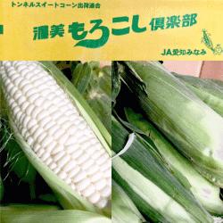 白トウモロコシ-min