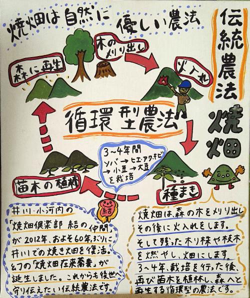 井川焼畑農法500-min