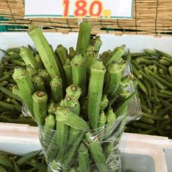 野菜170913-min