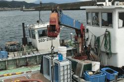 魚171006-min