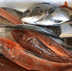 魚と畑171204-min