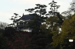 岡崎城スタート-min