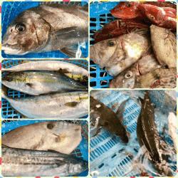 魚と畑180118-min