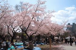 静岡祭り18001-min
