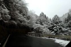 井川1702103-min