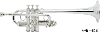 Bach189_Es-D350-min