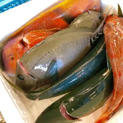 魚と畑190108-min