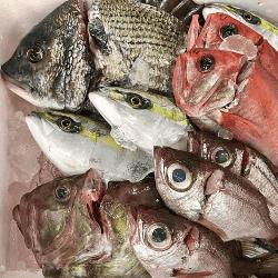 魚と畑190125-min