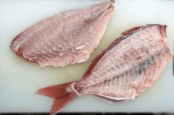 魚の保存1-min