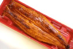 中国産鰻ジャポニカ種-min