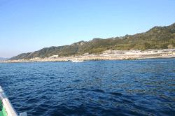 魚用宗191101-min