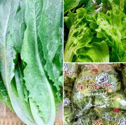 野菜170314-min