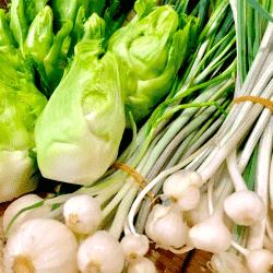 野菜1703221-min